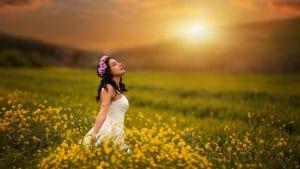 сбор трав солнцестояние